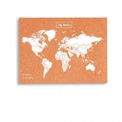 Prikbord wereldkaart