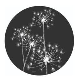 Muurcirkel berenklauw zwart 40 cm